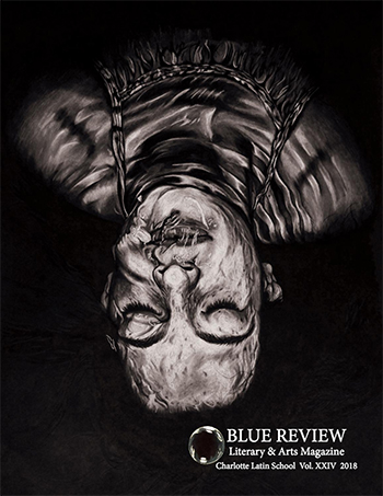2018 Blue Review cover